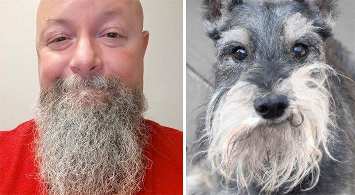 humans-look-like-dogs-doppelganger-you-are-dog-now-twitter-36-57a46b3b65b66__700