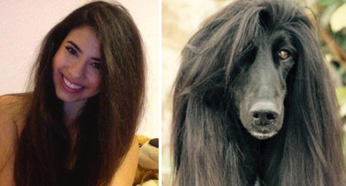 humans-look-like-dogs-doppelganger-you-are-dog-now-twitter-62-57a46b98b7eaf__700