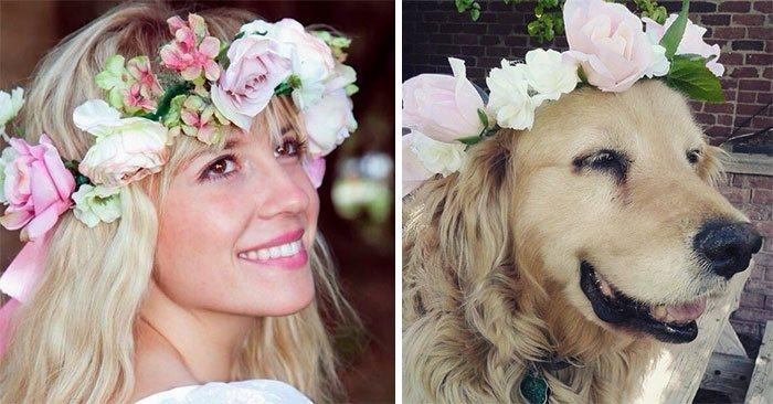 humans-look-like-dogs-doppelganger-you-are-dog-now-twitter-92-57a46be81bfa2__700